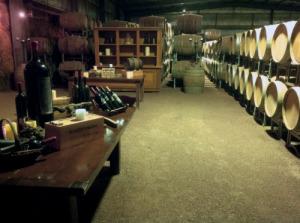 Warrenmang cellar