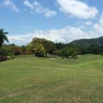 Paradise Palms Fairway 2