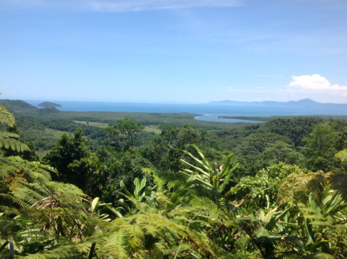 View from lookout - Daintree