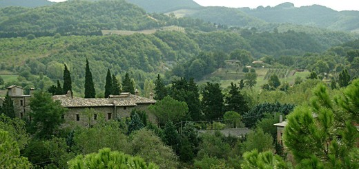 The view from our terrace - Umbria