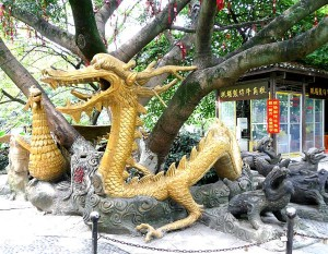 Dragon Tree at Li river park