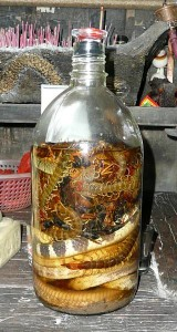 Snake & Centipede wine