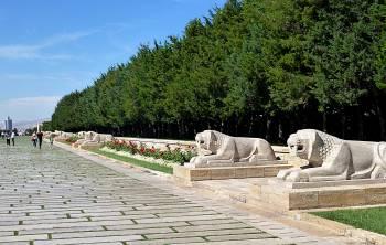 Avenue of Lions
