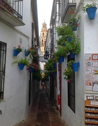 Calle de los Flores