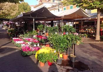 Nice Flower market