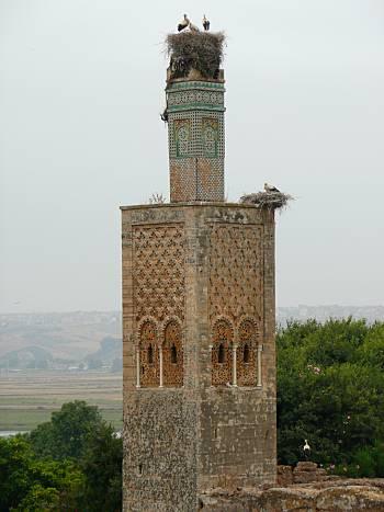 Chellah minaret