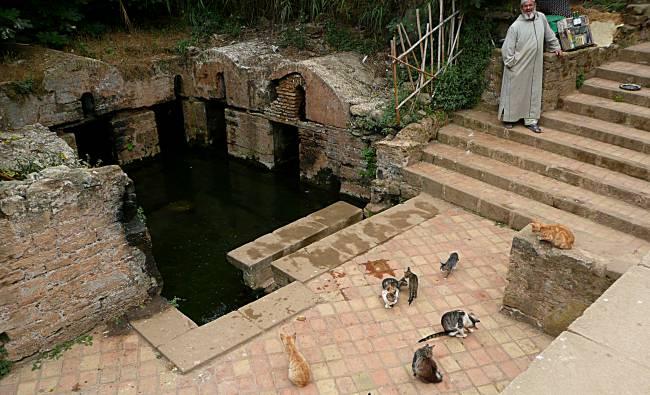 Sacred Pool Chellah