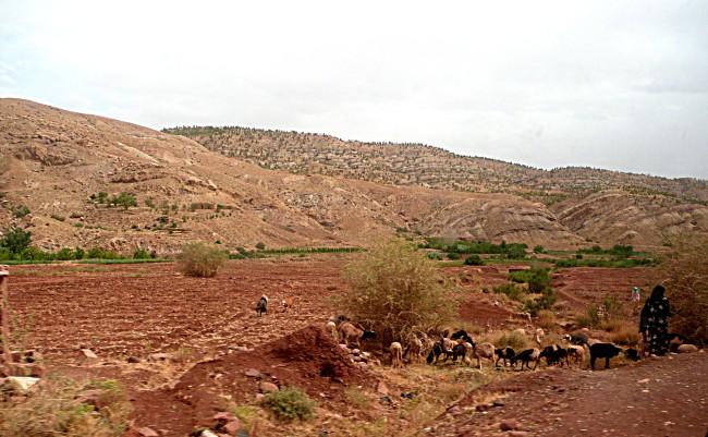 Road to Telouet